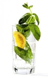 Wasser mit Zitrone und Pfefferminz